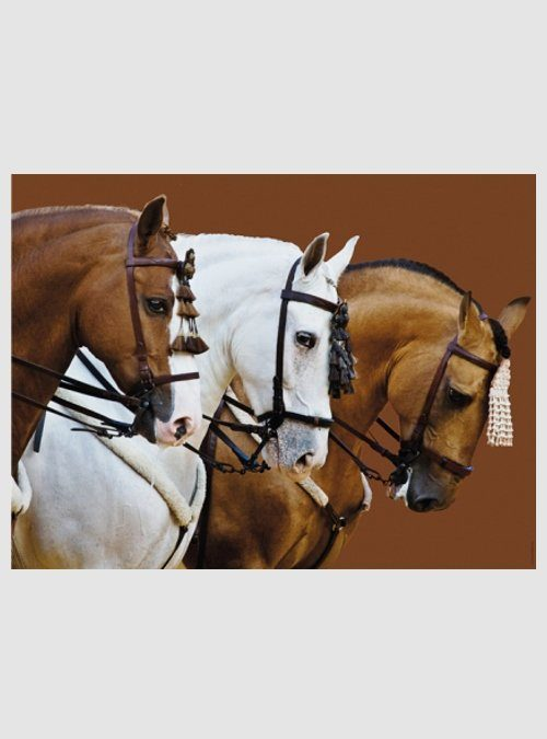 Κομψά Άλογα, 1500 τεμ.