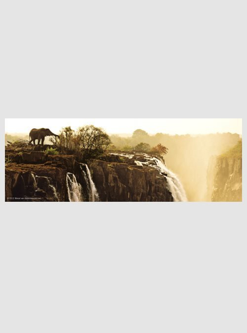 Έκδοση Humboldt: Ελέφαντας, 75 τεμ.