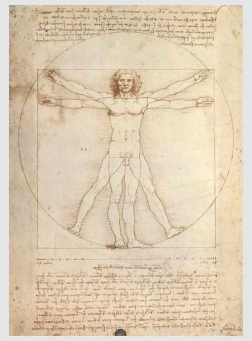 15250-da-vinci-uomo-vitruviano-1000pcs