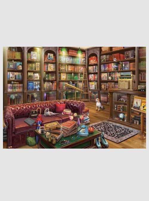 19846-the-reading-room-1000pcs
