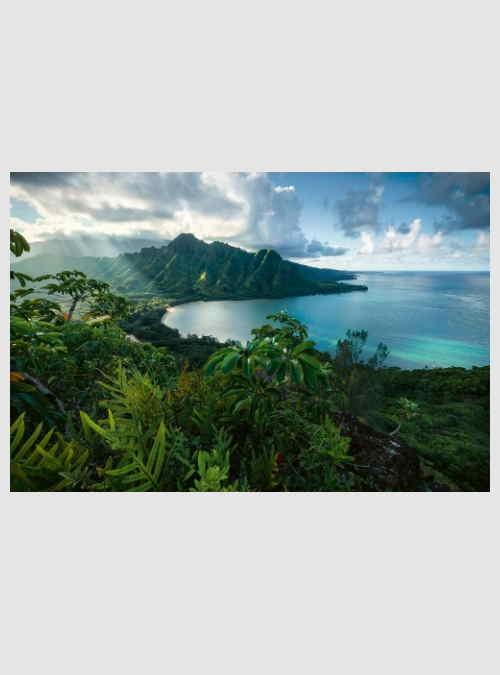 16106-hawaiian-viewpoint-5000pcs