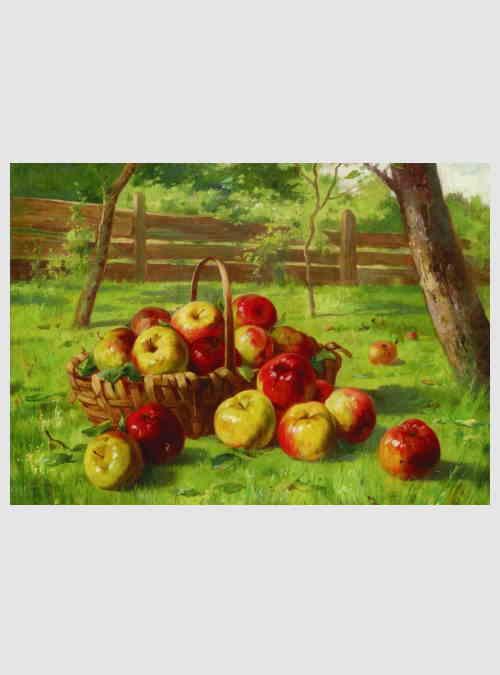 60768-Karl-Vikas-Apple-Harvest-500pcs