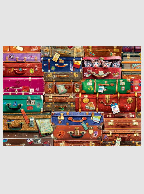 6000-5468-Travel-Suitcases-1000pcs
