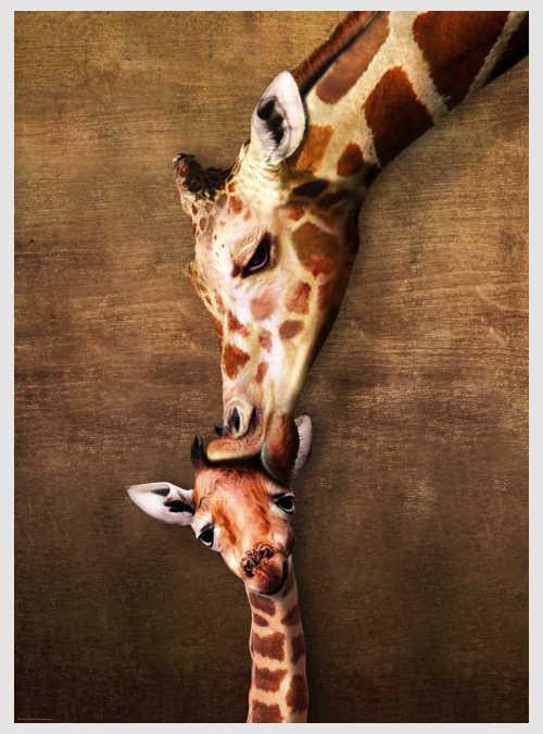 6000-0301-the-mother-giraffe-and-its-girafon-1000pcs