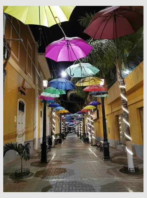 225945-street-with-umbrellas-in-piura-peru-1000pcs